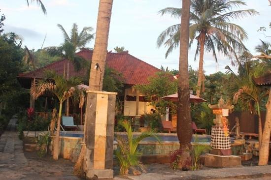 Bali Bhuana Beach Cottages:                                     Morning light