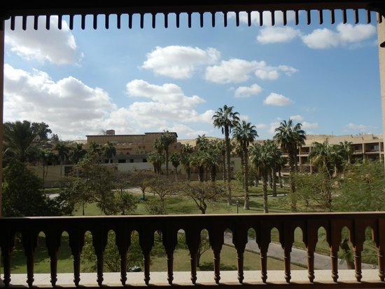 Mena House Hotel:                   view from balcony