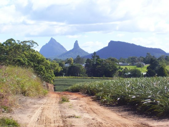Magical Mystery Tours- Day Tours: Glass House Mountains