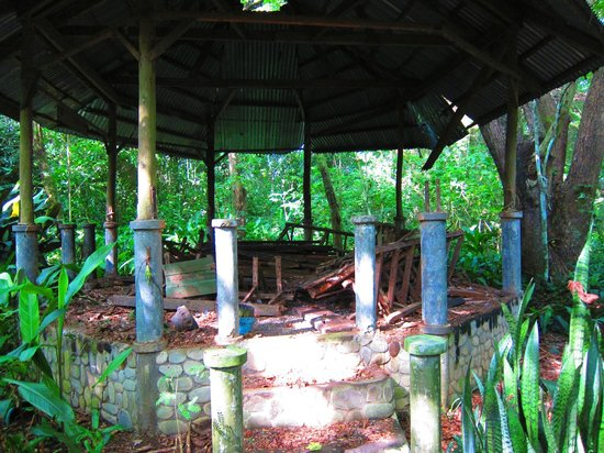 Palawan Wildlife Rescue and Conservation Center:                   Ruin in Progress