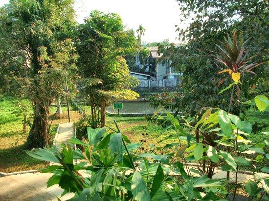 Bogyoke Aung San Museum :                   次男が亡くなったといわれるプール