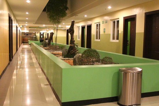 Go Hotels Tacloban: Common Area / Hallway