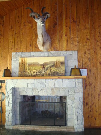 Panamericano Bariloche:                   Lounge