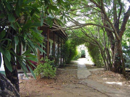 Triniti Guest House 사진