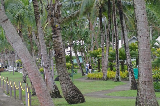 Fiji Hideaway Resort & Spa :                   The gardens around hideaway are fantastic