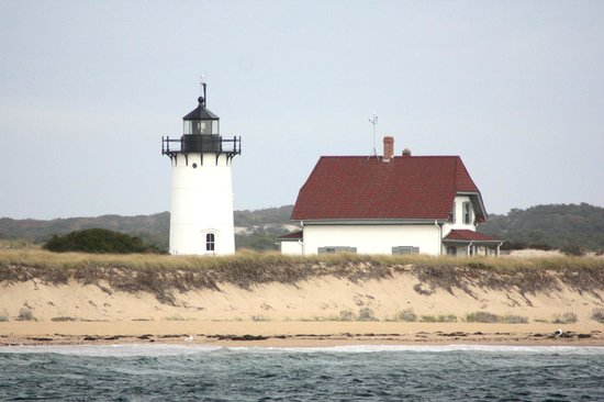 Dolphin Fleet Whale Watch: Cape Cod coast from the sea