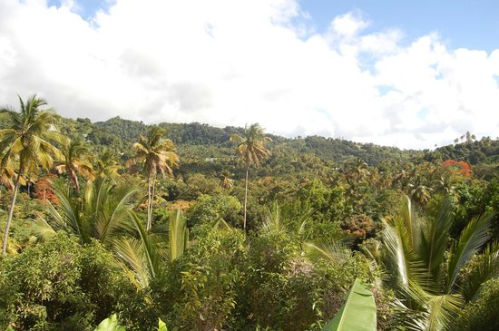 Fond Doux Plantation & Resort:                   View from the verandah of a hillside cottage