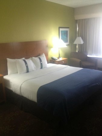 Holiday Inn Chicago Matteson Conference Center : Kind Size Bed