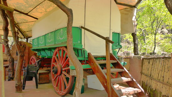Tussen-I-Bome Guest Farm: Ox-Wagon Accommodation