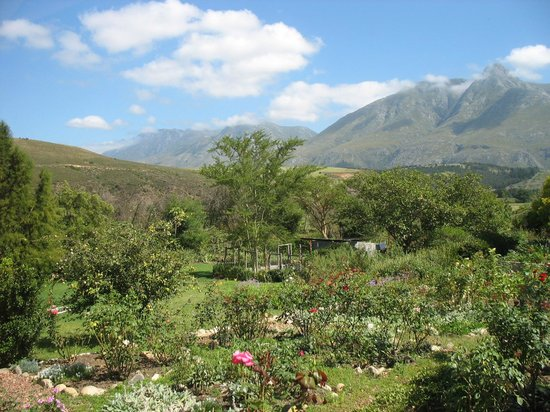 Wildebraam Berry Estate:                                                                         Berry Cottage - View fro