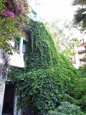 Tropikal Hotel:                   на территории отеля