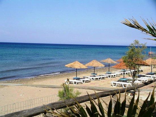 Arazzo Apartments & Studios: Ionion beach near to the villa