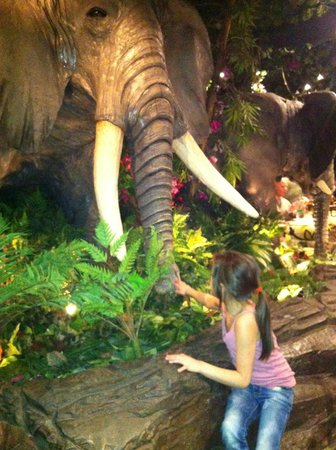 Animated animals picture of rainforest cafe london for Rainforest londra