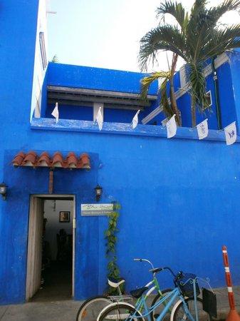 Terraza en Blue house.