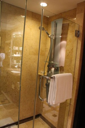 Mandarin Orchard Singapore:                   Shower Panel