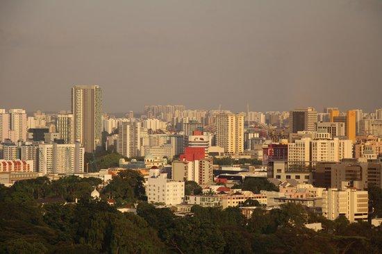 만다린 오차드 싱가포르 사진