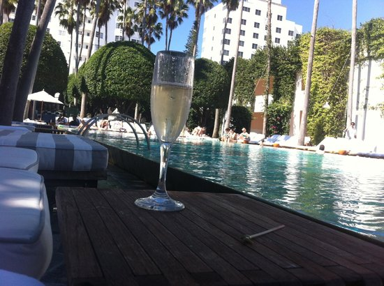 Delano South Beach Hotel: Bubbly by the pool