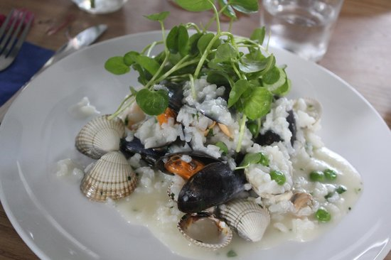 Galley Cafe:                   Seafood Risotto