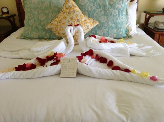 The Ritz-Carlton Grand Cayman:                   Birthday gift from the housekeeper. Very thoughtful.
