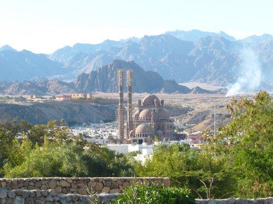 Blick zum Old Market mit dem Rohbau der Moschee