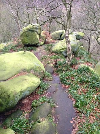 Druids Caves:                                     4