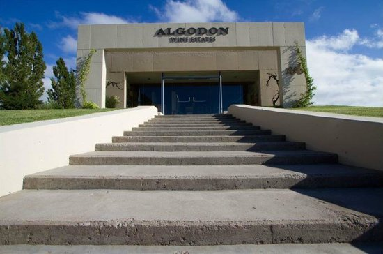 ‪Algodon Winery‬