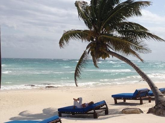 Hemingway Eco Beach Resort:                   Die Liegen am Strand. wundervoll