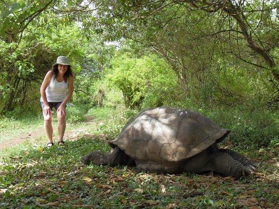 Gray Line Ecuador:                   Galápagos, una belleza!!!!!!!!
