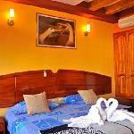 Galapagos Eco Friendly : King Sized Room