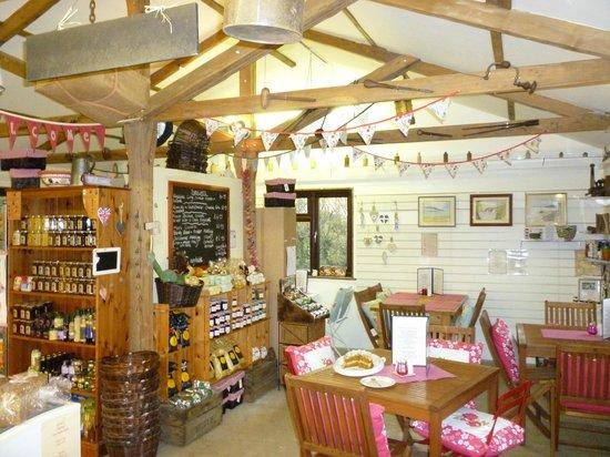 inside hill top farm shop picture of hilltop farm shop camelford