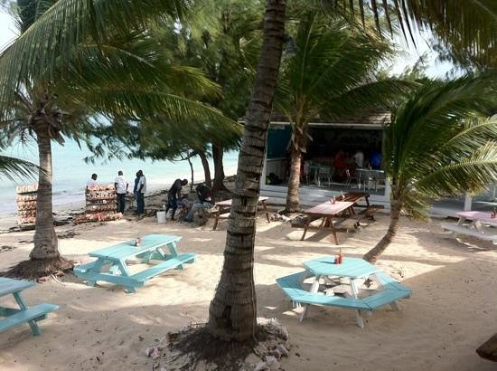 da Conch Shack: The natural ambiance of the Conch Shack