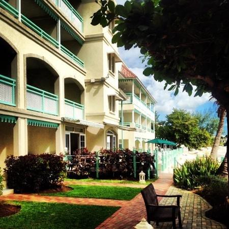 Coral Mist Beach Hotel:                   O lugar perfeito para ficar em Barbados.