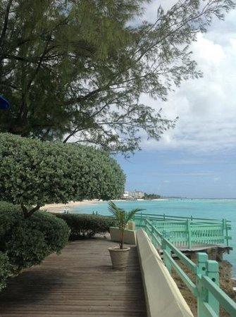 Coral Mist Beach Hotel:                   vista incrível do deck.