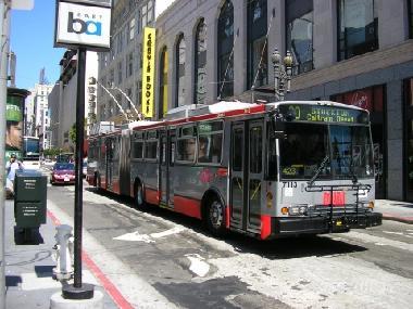 MUNI Buses