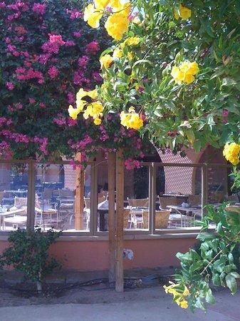 Hotel Sultan Bey Resort照片