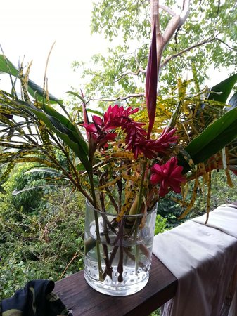 Manicou River:                   Conrad's spectacular flower arrangements....
