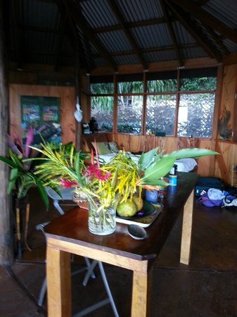 Manicou River:                   another room view with flowers