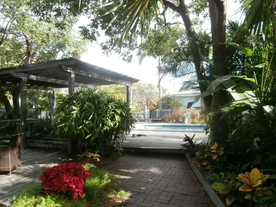 Merlin Guest House Key West: area piscina