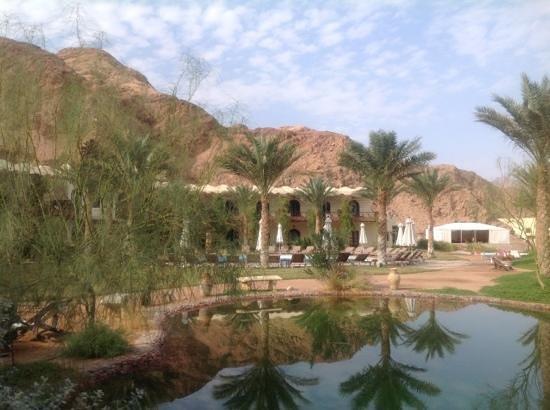 Dahab Paradise:                   Zicht vanaf het restaurant op het rechter deel van het hotel met de Bedouinete