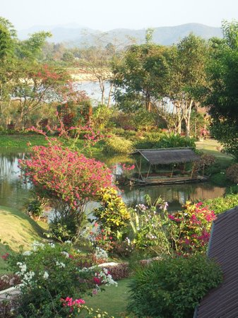 Maekok River Village Resort:                                                                         View of the pond area in