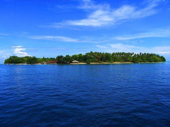Cakalang Bunaken:                                     Siladen