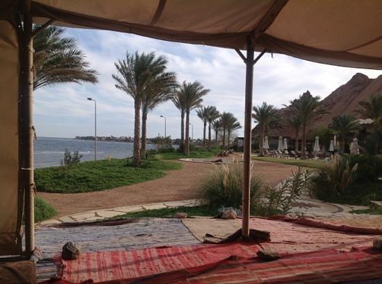 Dahab Paradise:                   Uiticht vanaf de Bedouinetent.