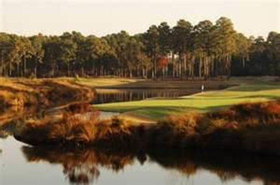 Hilton Head National: Another view of our signature hole.