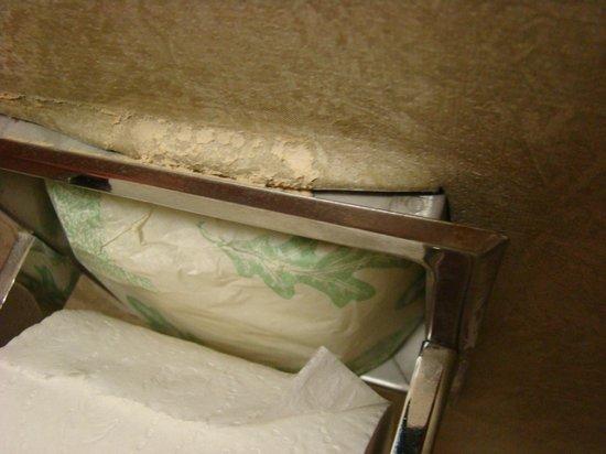 هامبتون إن آند سويتس فورت مايرز بيتش:                   Toilettenpapierhalter                 