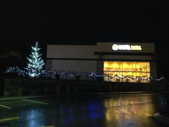 Cora : Christmas Tree