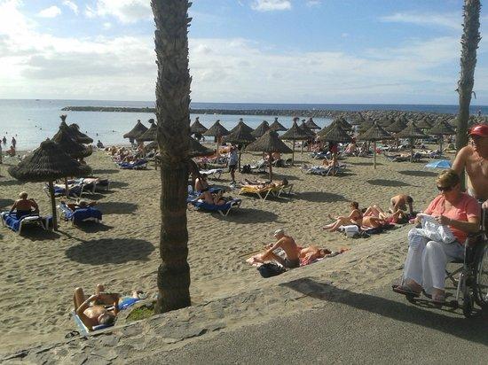 Cleopatra Palace Hotel:                   Camison Beach