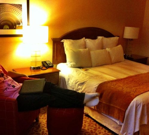 Crystal City Marriott at Reagan National Airport:                   room