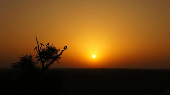Hotel Nirmal Haveli:                   sunrise again....