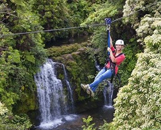 Skyline Eco Adventures - Akaka Falls Zipline Tour: 50ft waterfall