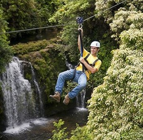Skyline Eco Adventures - Akaka Falls Zipline Tour: line 3 waterfall